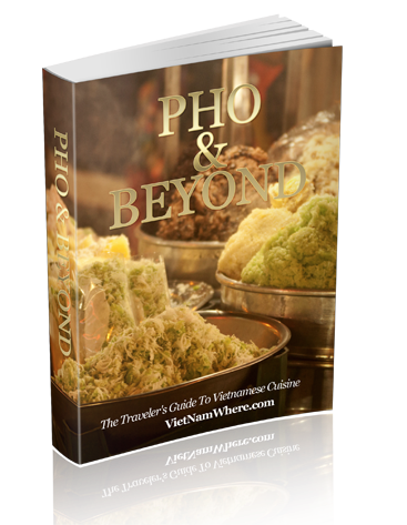 Pho and Beyond free ebook