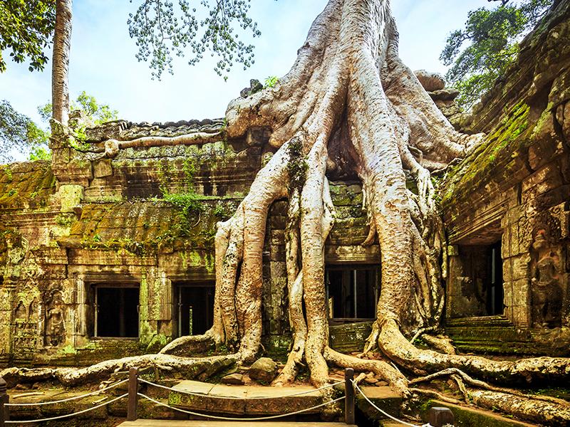 Cambodia at a Glance 8 Days, Cambodia Tour 8 Days