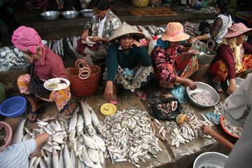 Kampot-fish-market