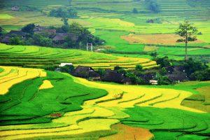 Things to see and do in Sapa