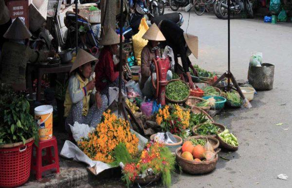 Introduction about Hoi An - Quang Nam - Vietnam Tours