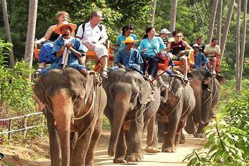 Island Safari Tours & Elephant Trekking