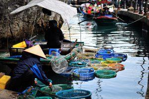 Halong Bay for Food Lovers