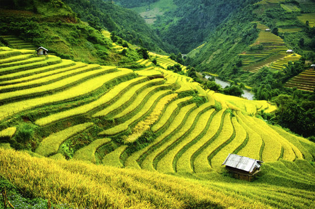 Enjoy the peaceful ambiance of the mountainous region in Sapa tours