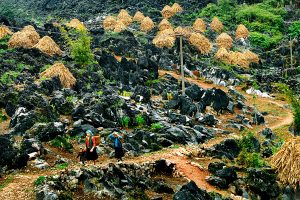 Discover the endless beauty of the Northern Vietnam