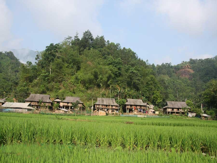 Cao Son area