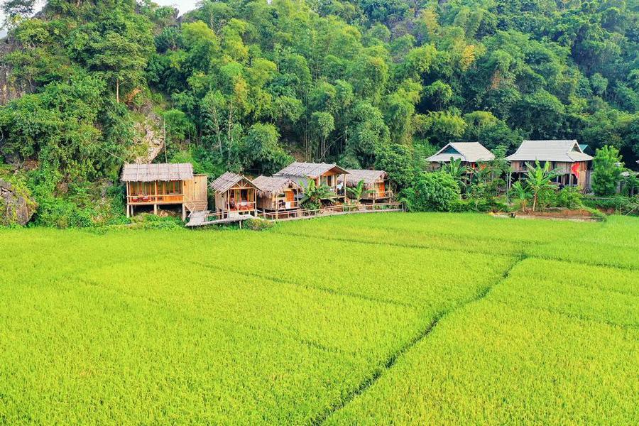 Van Village