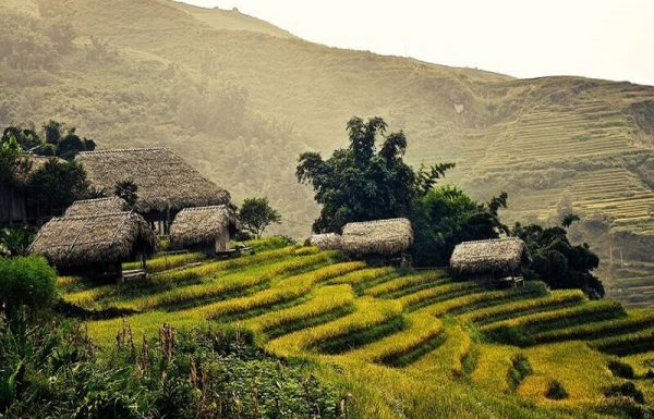 Top 10 amazing homestay in Sapa to visit before you die 13