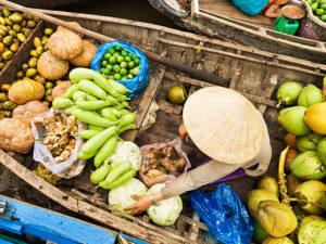 Mekong Delta Tours from Ho Chi Minh - Vietnam tours | Asia tour advisor