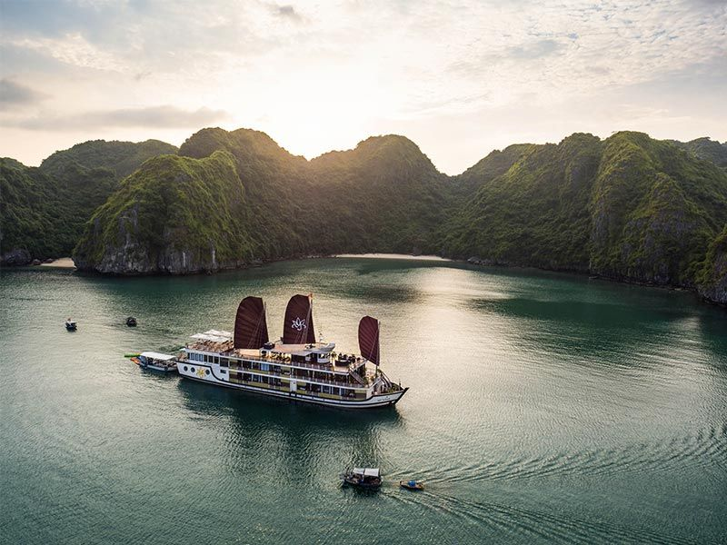 Orchid Cruise Halong 2 - 3 Days from Hanoi. Free Airport Transfers
