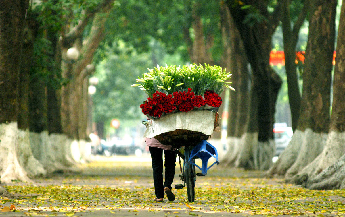 5 reasons to visit Hanoi in your Vietnam tours 1
