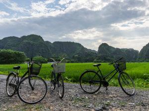 Hoa Lu, Tam Coc & Mua Caves Tour from Hanoi