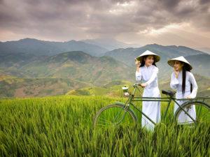 Halong Bay & Mu Cang Chai 7 days