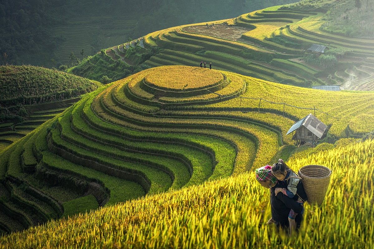 4-popular-types-of-Vietnam-tour-packages-that-foreign-tourists-need-3