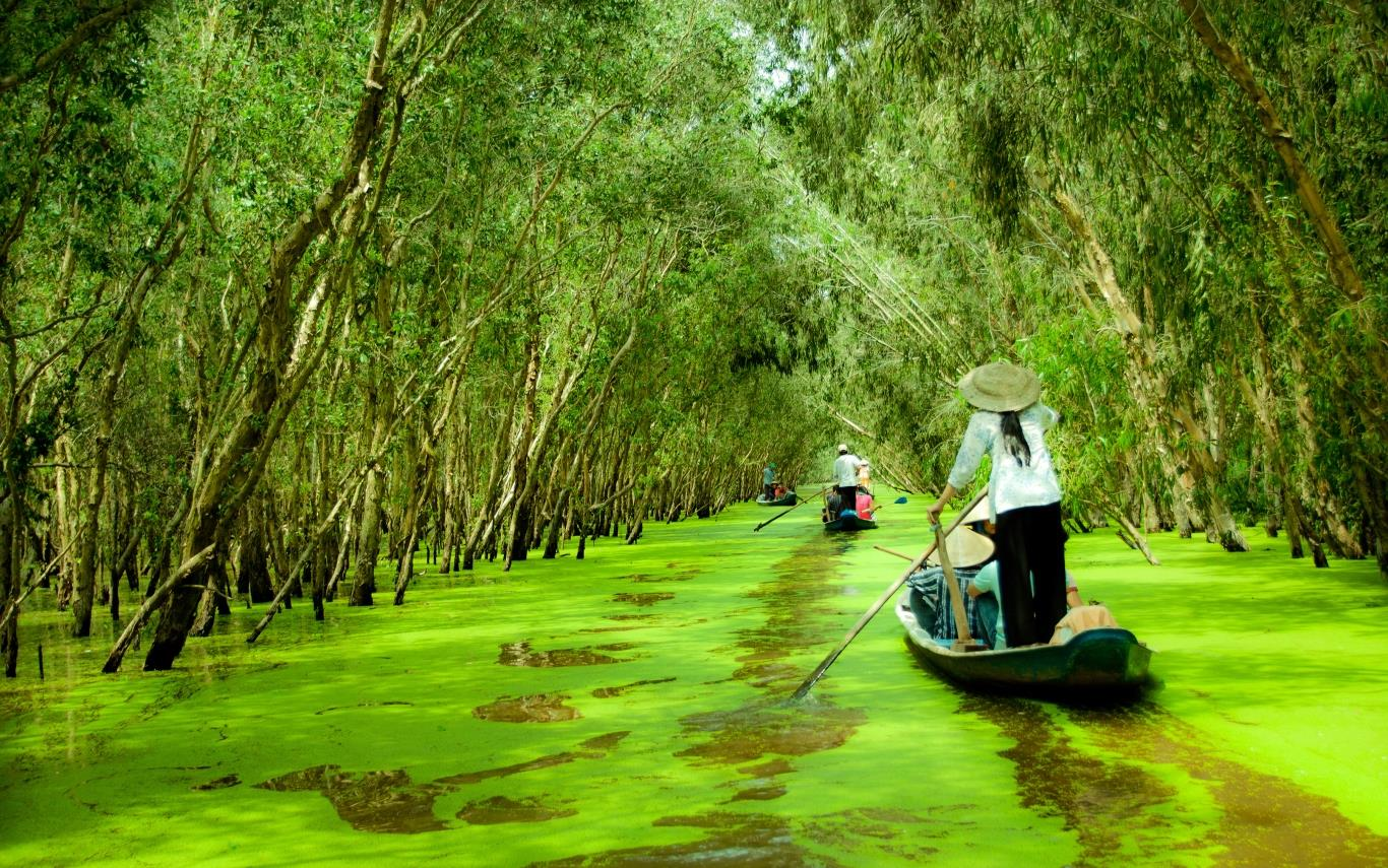 How to make a Mekong Delta tour 2 days 1 night 1