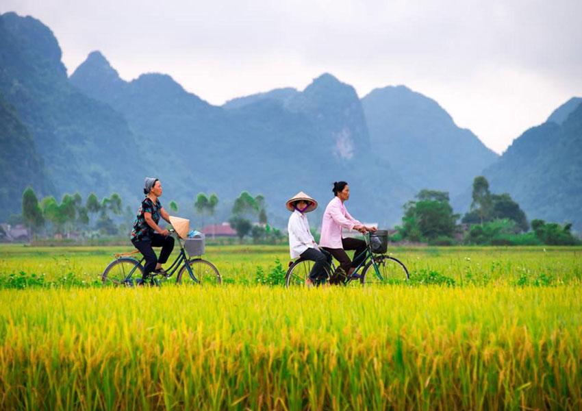 Exclusive Journey of Northern Vietnam 5 Days - Asia Tour Advisor