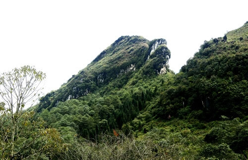 Ham Rong Mountain, the destination in Sapa you should not miss