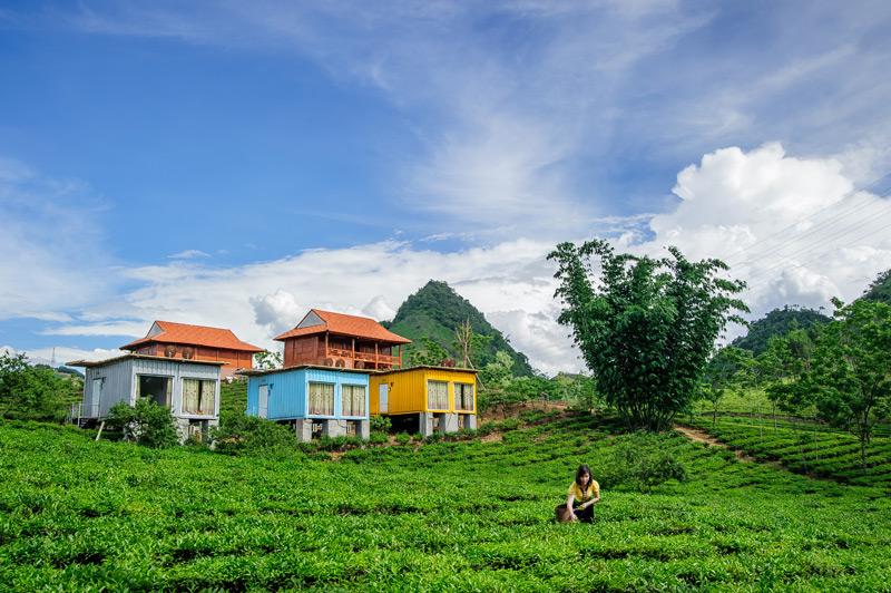 Moc Chau Arena Village homestay