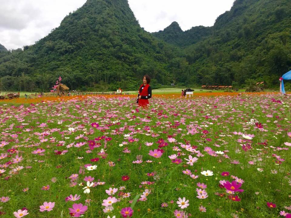 New check in point Bac Son flower valley