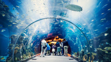 Travel experiences and popular destinations in Nha Trang