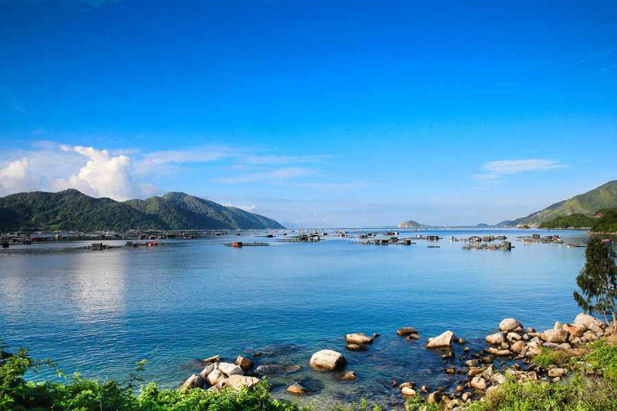 Places to visit in Phu Yen, the best time to visit Phu Yen